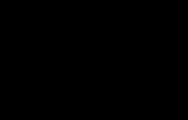 the-demi-angled-logo-black